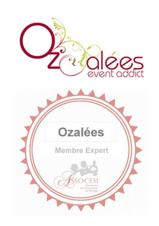 Présentation de l'agence Ozalées – membre expert !